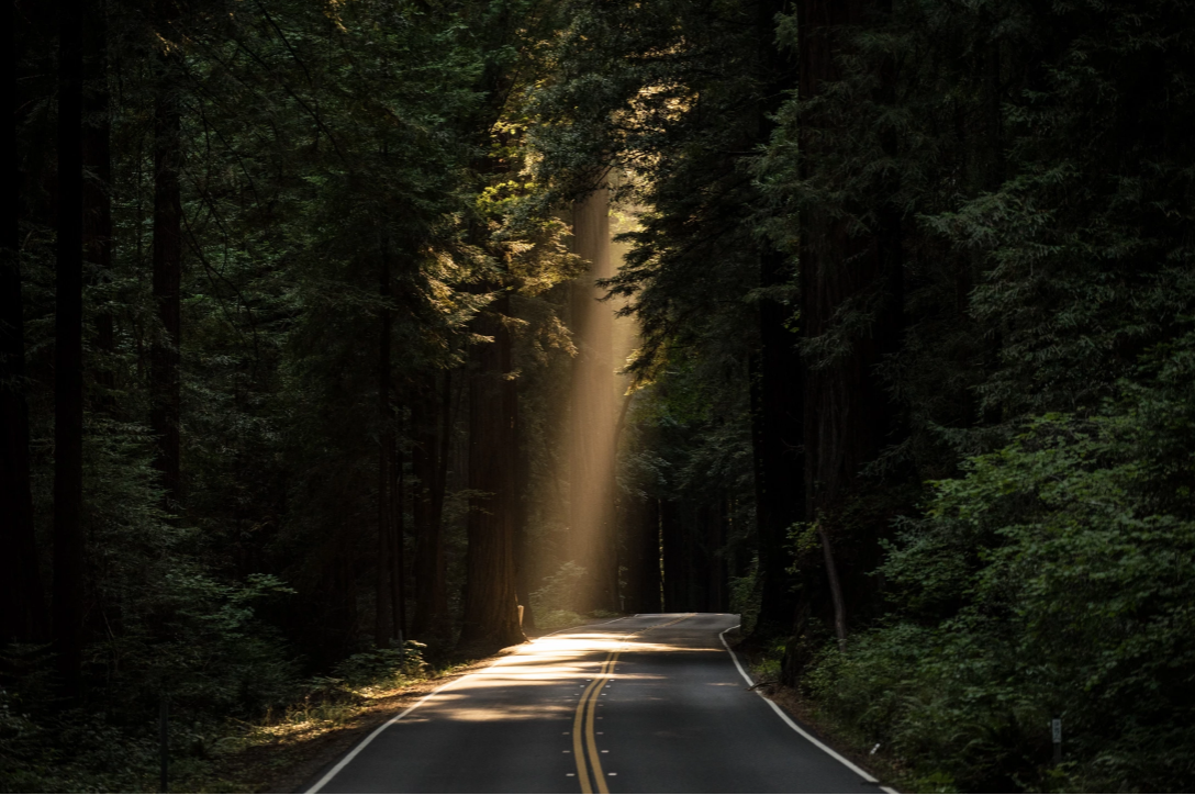Life After Death – Part IV – The Road Beyond